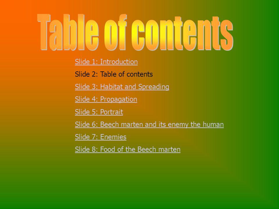 Slide 1: Introduction Slide 2: Table of contents Slide 3: Habitat and Spreading Slide 4: Propagation Slide 5: Portrait Slide 6: Beech marten and its enemy the human Slide 7: Enemies Slide 8: Food of the Beech marten
