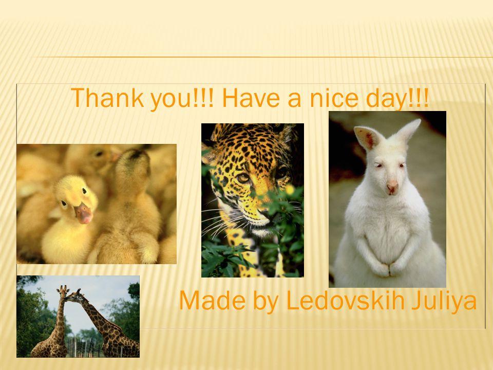 Thank you!!! Have a nice day!!! Made by Ledovskih Juliya