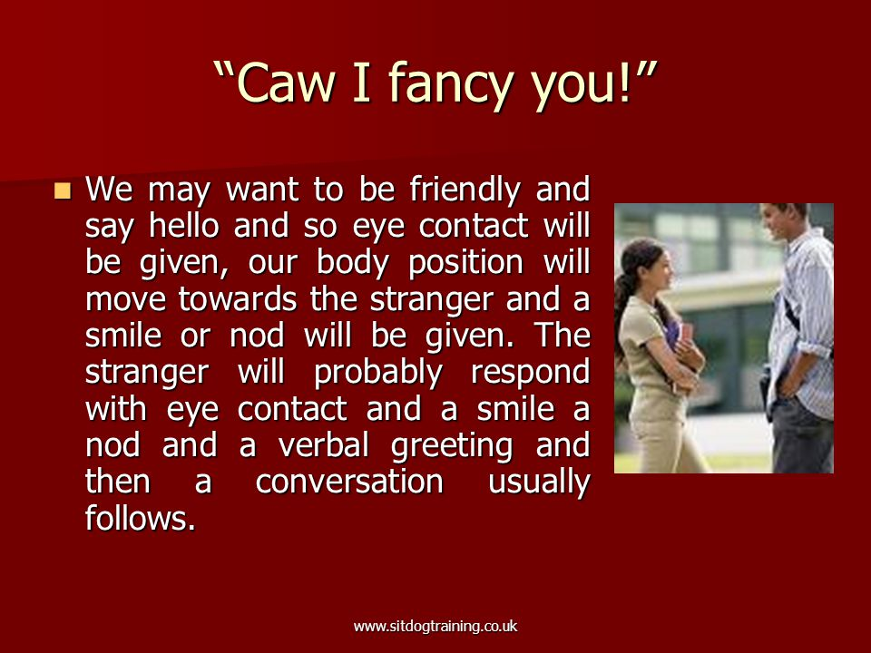 """www.sitdogtraining.co.uk """"Caw I fancy you!"""" We may want to be friendly and say hello and so eye contact will be given, our body position will move tow"""