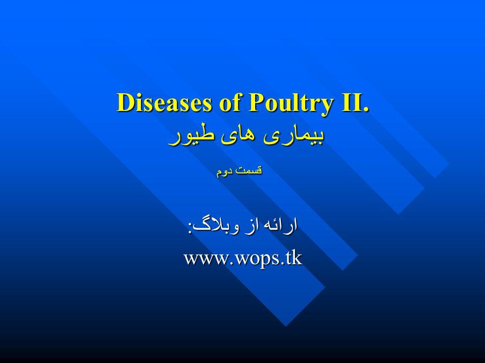 Diseases of Poultry II. بیماری های طیور قسمت دوم ارائه از وبلاگ: www.wops.tk