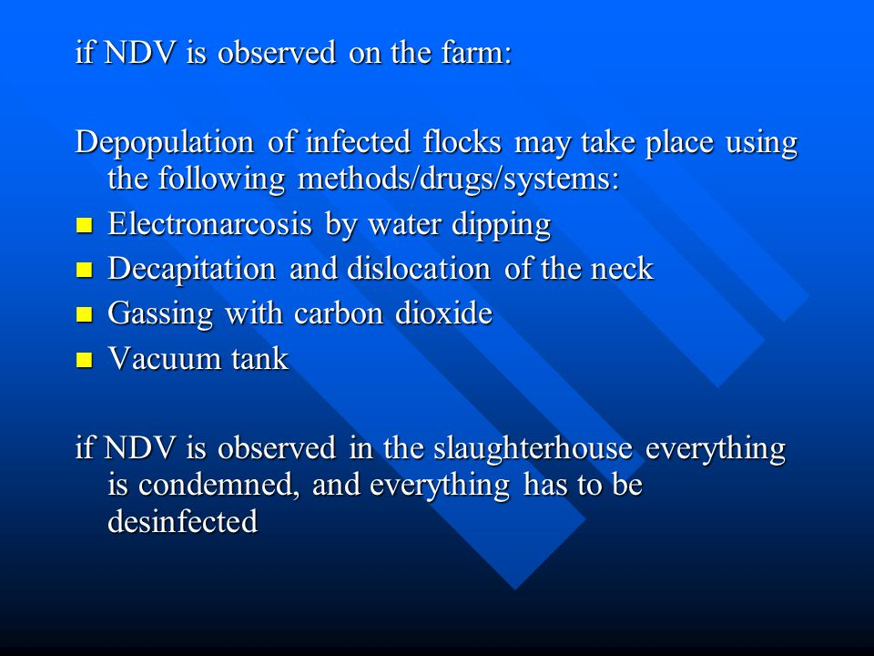 if NDV is observed on the farm: Depopulation of infected flocks may take place using the following methods/drugs/systems: Electronarcosis by water dipping Electronarcosis by water dipping Decapitation and dislocation of the neck Decapitation and dislocation of the neck Gassing with carbon dioxide Gassing with carbon dioxide Vacuum tank Vacuum tank if NDV is observed in the slaughterhouse everything is condemned, and everything has to be desinfected