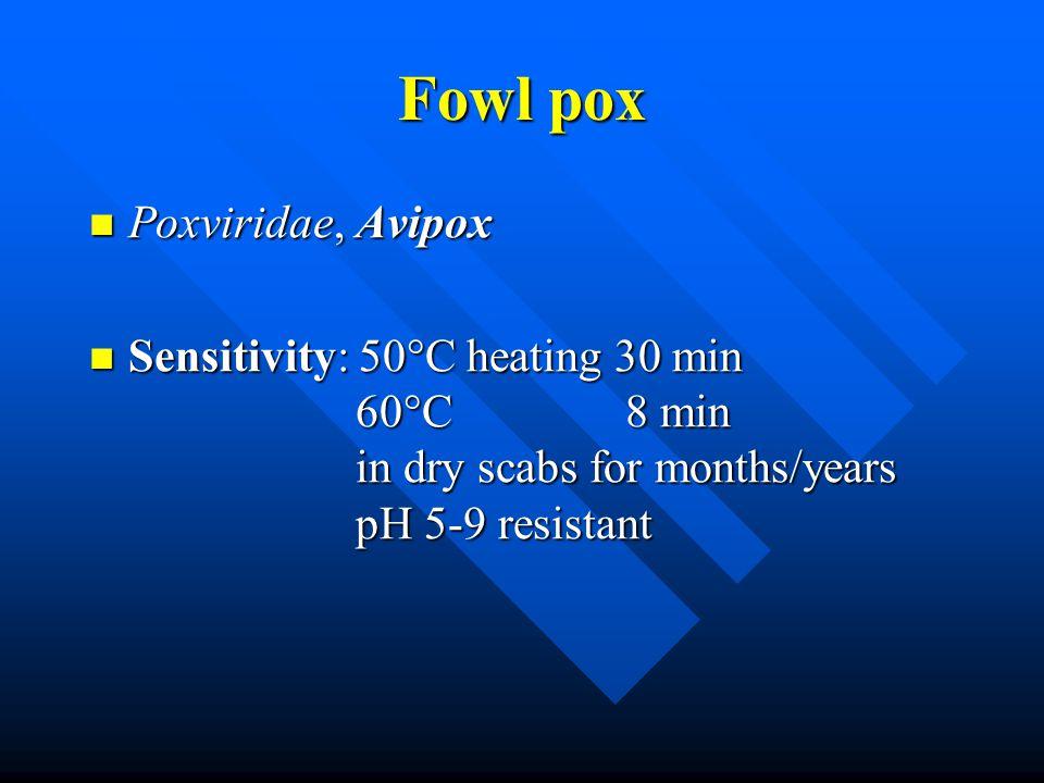 Fowl pox Poxviridae, Avipox Poxviridae, Avipox Sensitivity: 50°C heating 30 min 60°C 8 min in dry scabs for months/years pH 5-9 resistant Sensitivity: 50°C heating 30 min 60°C 8 min in dry scabs for months/years pH 5-9 resistant