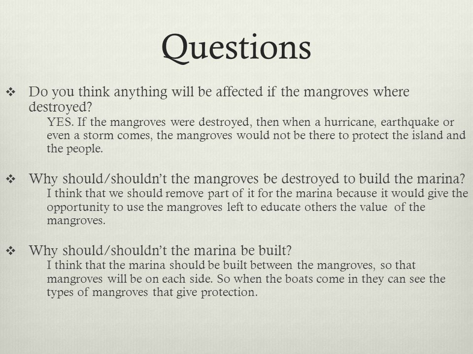 Questions  Do you think anything will be affected if the mangroves where destroyed? YES. If the mangroves were destroyed, then when a hurricane, eart