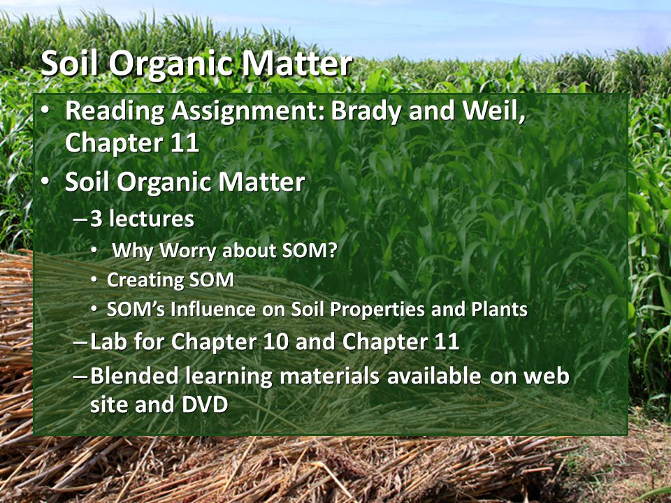 Soil Function and Properties The percentage of soil organic matter (SOM) in most soils is small.