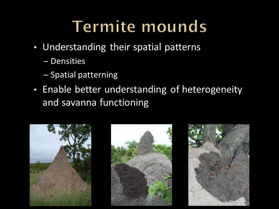Understanding their spatial patterns – Densities – Spatial patterning Enable better understanding of heterogeneity and savanna functioning