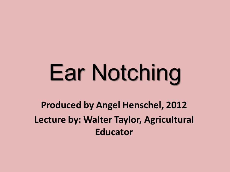 Why do we ear notch.