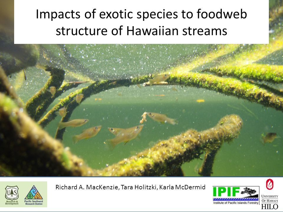 Impacts of exotic species to foodweb structure of Hawaiian streams Richard A.