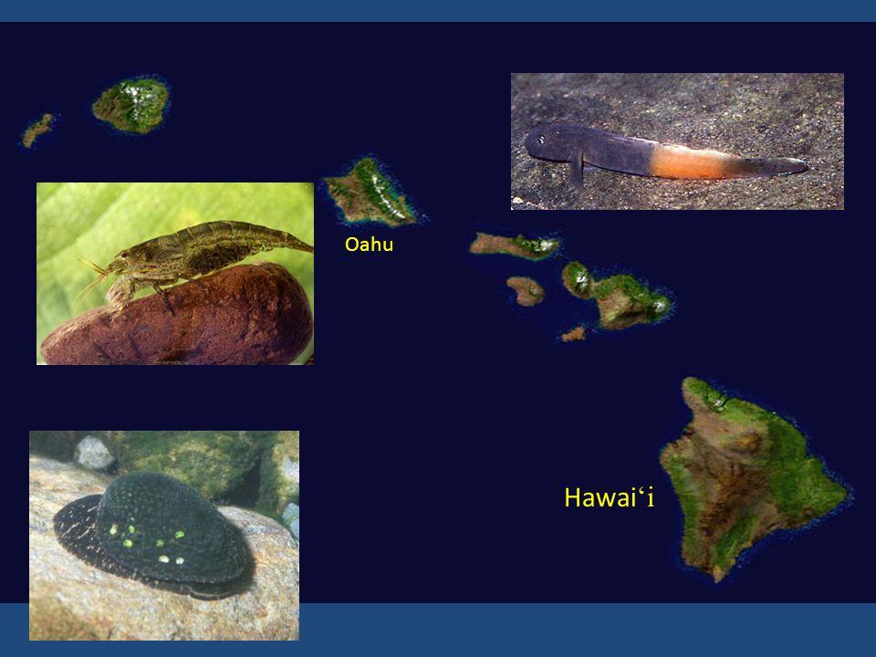 Hawai 'i Oahu