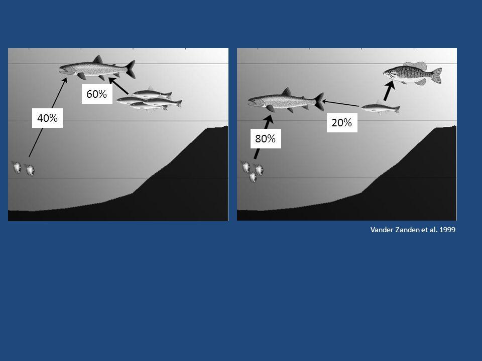 40% 60% 80% 20% Vander Zanden et al. 1999