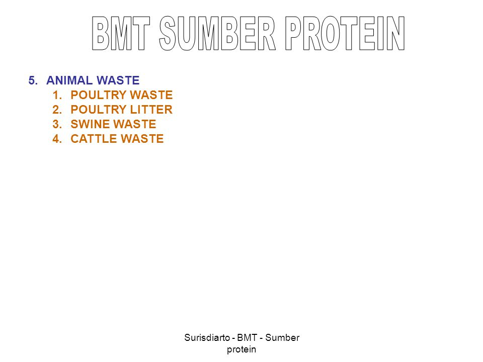 Surisdiarto - BMT - Sumber protein 5.