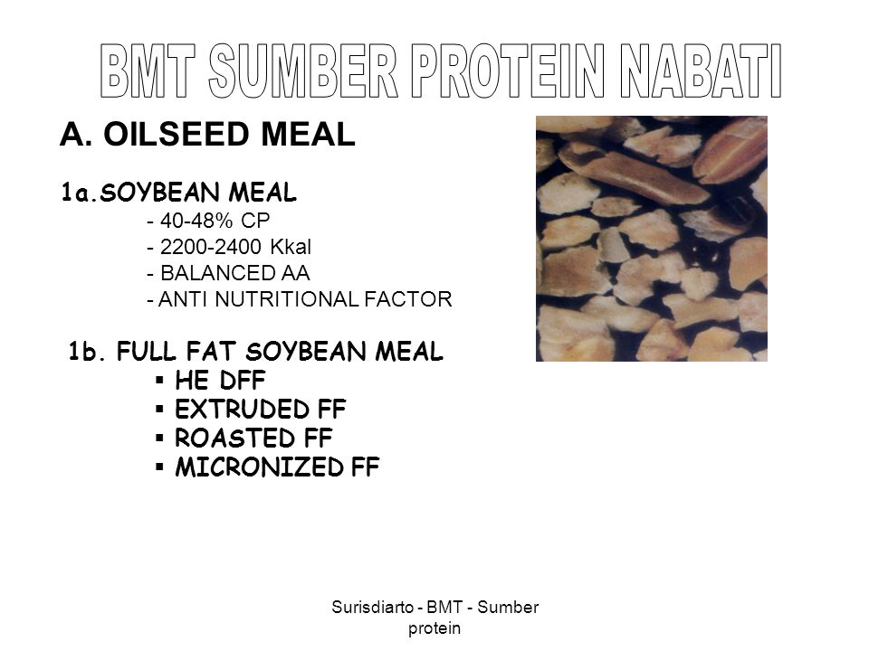 Surisdiarto - BMT - Sumber protein 1a.SOYBEAN MEAL - 40-48% CP - 2200-2400 Kkal - BALANCED AA - ANTI NUTRITIONAL FACTOR 1b. FULL FAT SOYBEAN MEAL  HE