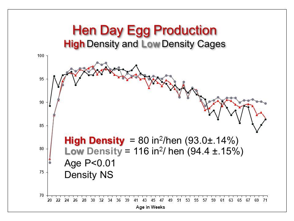 Hen Day Egg Production HighLow High Density and Low Density Cages Hen Day Egg Production HighLow High Density and Low Density Cages High Density High Density = 80 in 2 /hen (93.0±.14%) Low Low Density = 116 in 2 / hen (94.4 ±.15%) Age P<0.01 Density NS