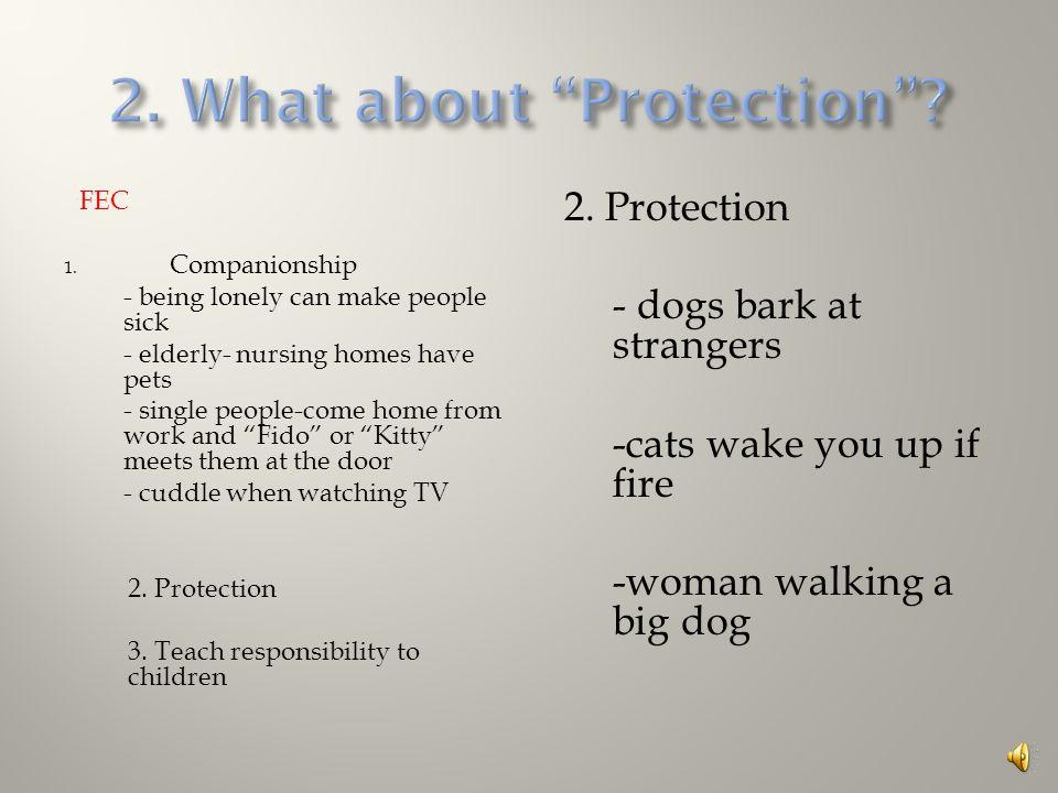 FEC 1. Companionship 2. Protection 3. Teach responsibility to children 1.