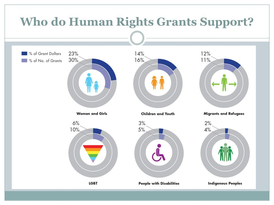 Who do Human Rights Grants Support?