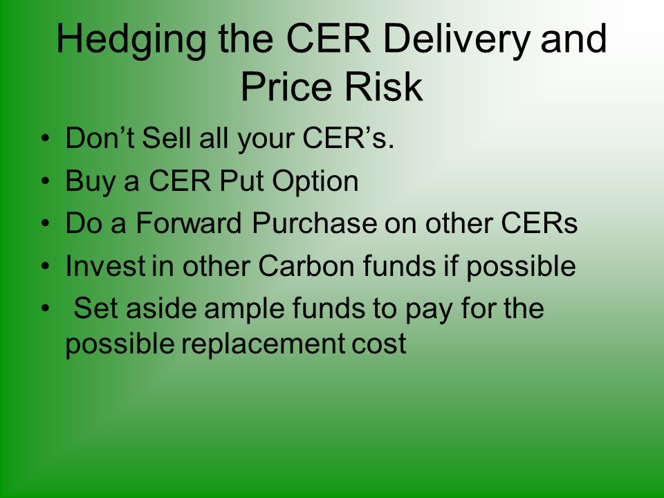 Hedging the CER Delivery and Price Risk Don't Sell all your CER's.