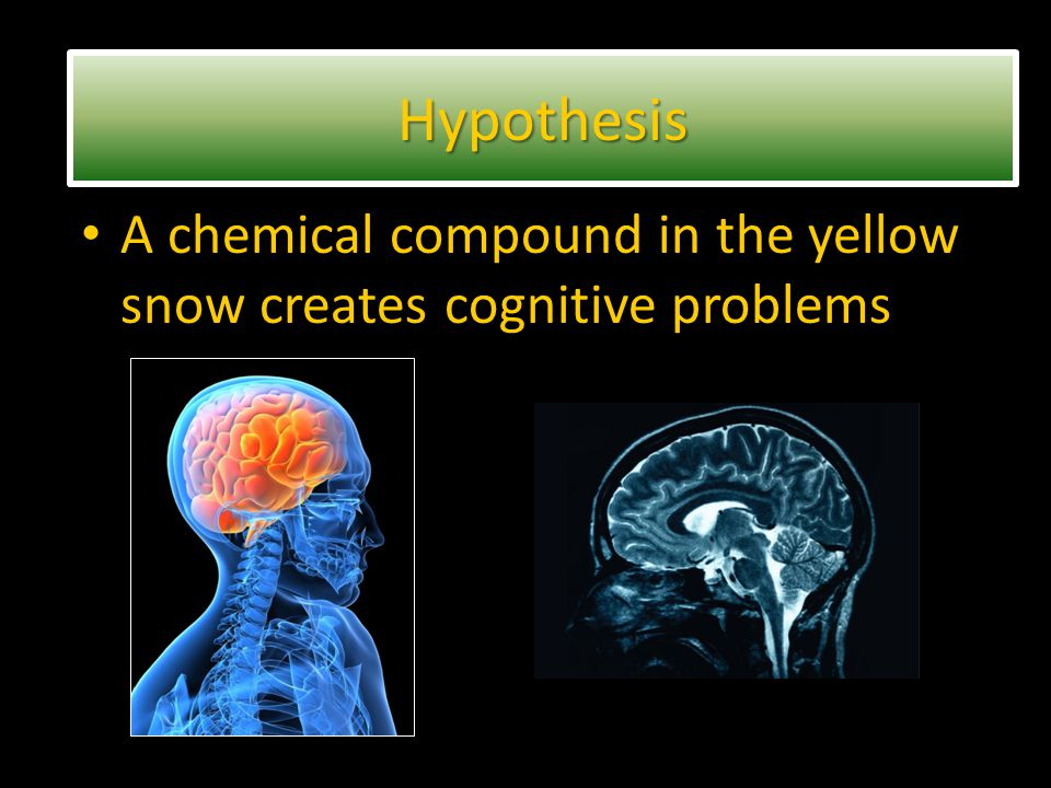 A chemical compound in the yellow snow creates cognitive problems HypothesisHypothesis