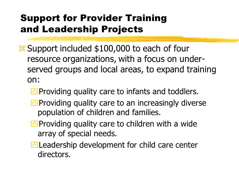 Support for Provider Training and Leadership Projects zSupport included $100,000 to each of four resource organizations, with a focus on under- served groups and local areas, to expand training on: yProviding quality care to infants and toddlers.