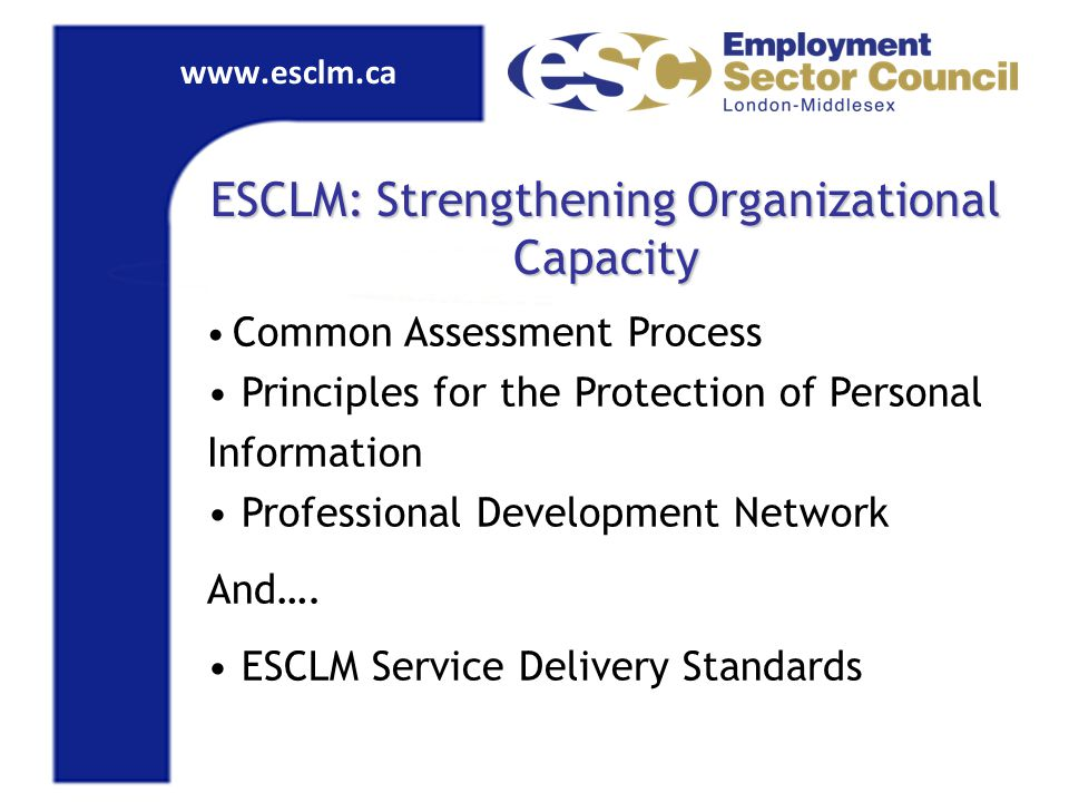 www.esclm.ca ESCLM: Strengthening Organizational Capacity Common Assessment Process Principles for the Protection of Personal Information Professional Development Network And….