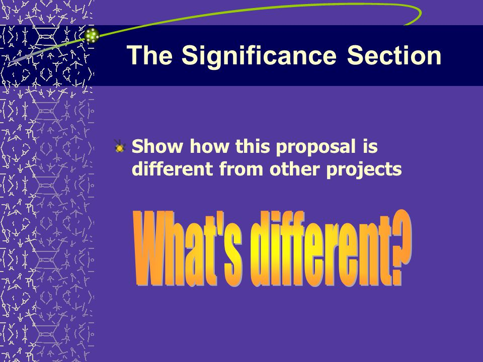 The Significance Section Show how this proposal is different from other projects