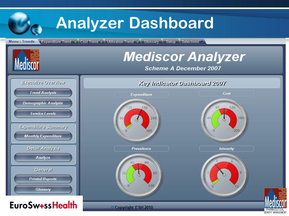 Analyzer Dashboard 19 © Copyright ESH 2010