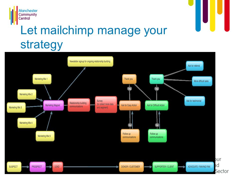 Let mailchimp manage your strategy