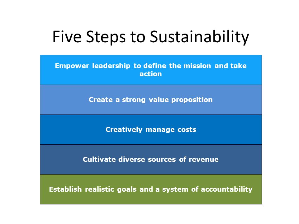 Empower leadership to define the mission and take action Create a strong value proposition Creatively manage costs Cultivate diverse sources of revenue Establish realistic goals and a system of accountability Five Steps to Sustainability