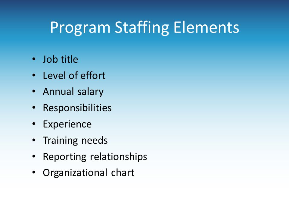 Program Staffing Elements Job title Level of effort Annual salary Responsibilities Experience Training needs Reporting relationships Organizational ch