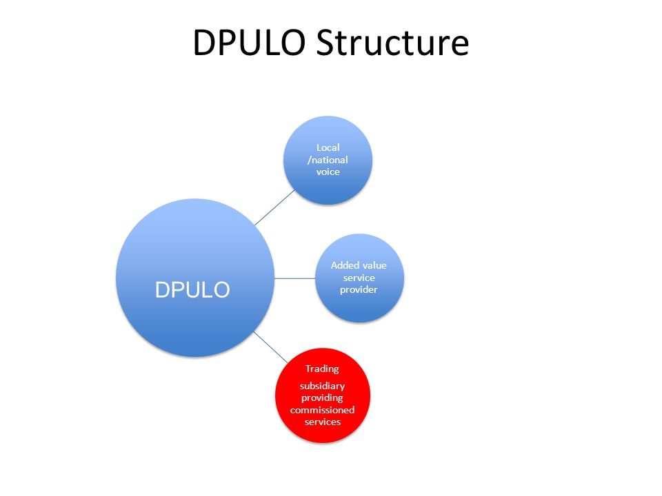 DPULO Structure Local /national voice Added value service provider Trading subsidiary providing commissioned services DPULO