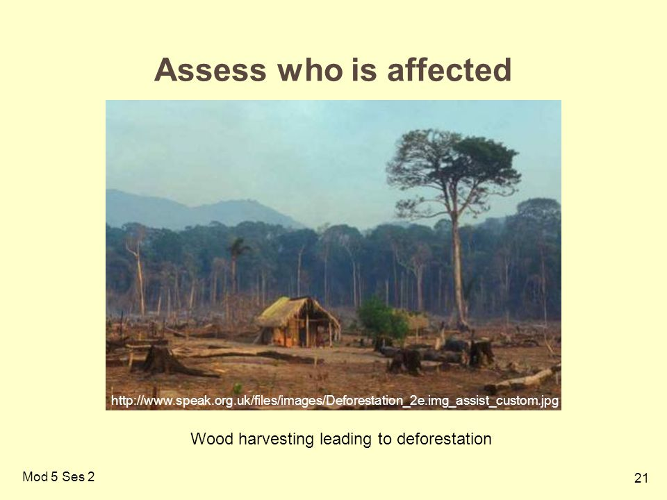 21 Mod 5 Ses 2 Assess who is affected http://www.speak.org.uk/files/images/Deforestation_2e.img_assist_custom.jpg Wood harvesting leading to deforestation