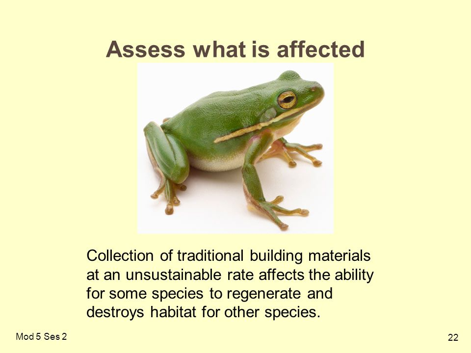 22 Mod 5 Ses 2 Assess what is affected Collection of traditional building materials at an unsustainable rate affects the ability for some species to regenerate and destroys habitat for other species.
