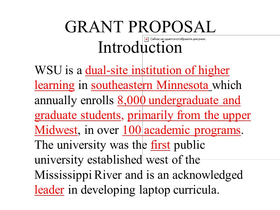 GRANT PROPOSAL Introduction Uniqueness – What epitomizes your organization.