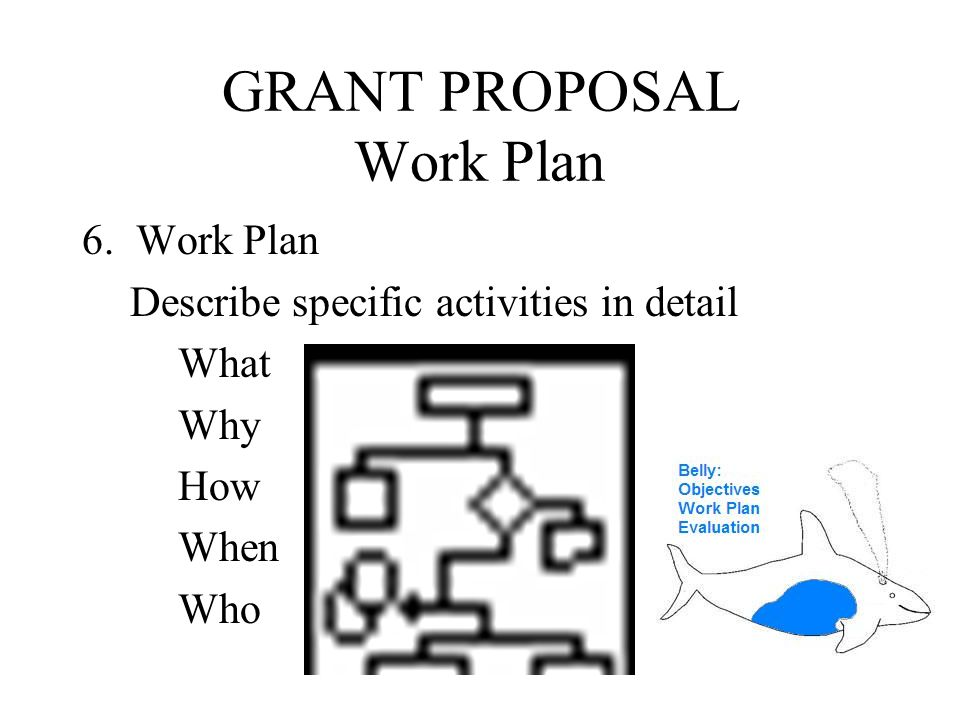 GRANT PROPOSAL WORKING OUTLINE