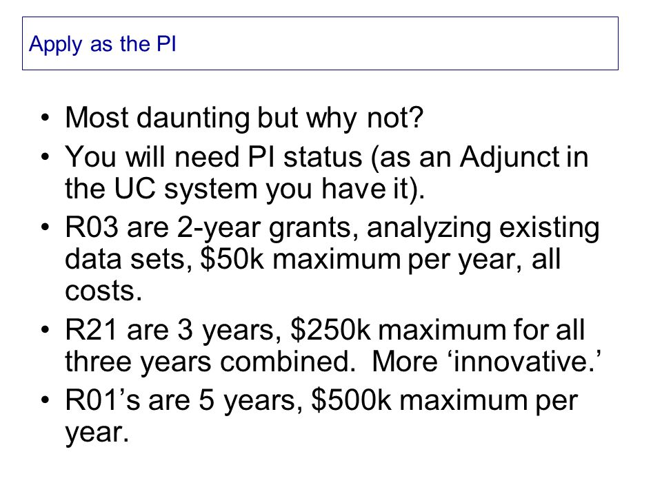 Apply as the PI Most daunting but why not.