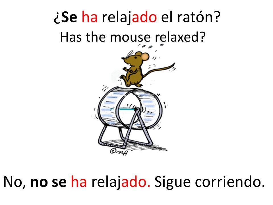 ¿Se ha relajado el ratón No, no se ha relajado. Sigue corriendo. Has the mouse relaxed