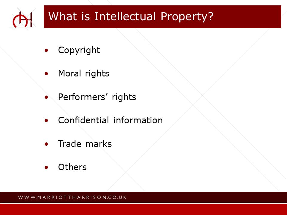 Where Intellectual Property is to be found Audio visual productions Written content; scripts and other material Photographs Drawings and other iconography Diagrams Musical compositions Sound recordings Formats Websites Software Publicity and advertising material Training material Trade/service marks (registered and unregistered) Brochures