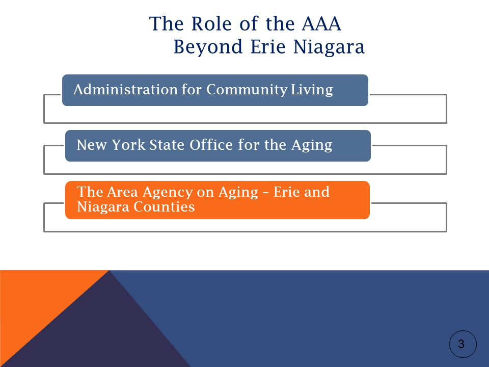 The Role of the AAA Beyond Erie Niagara Administration for Community Living New York State Office for the Aging The Area Agency on Aging – Erie and Niagara Counties 3