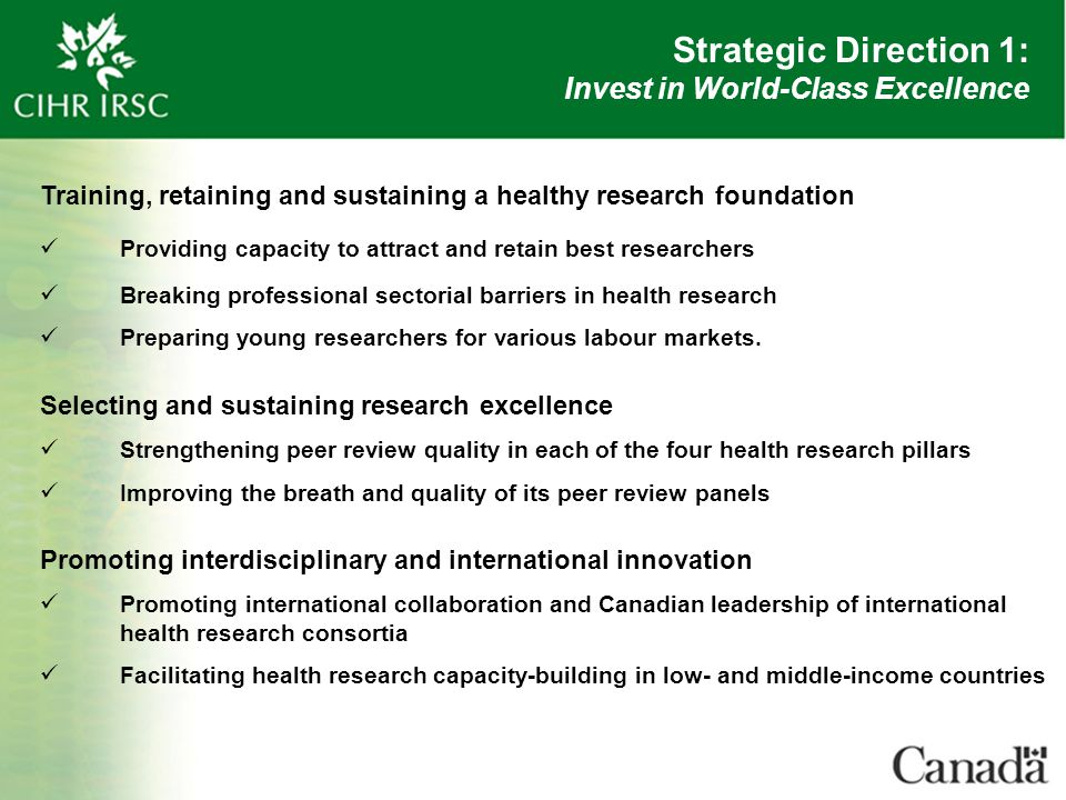 Strategic Direction 1: Invest in World-Class Excellence Training, retaining and sustaining a healthy research foundation Providing capacity to attract