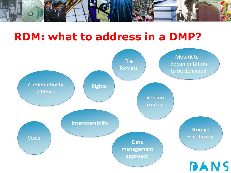 RDM: what to address in a DMP.