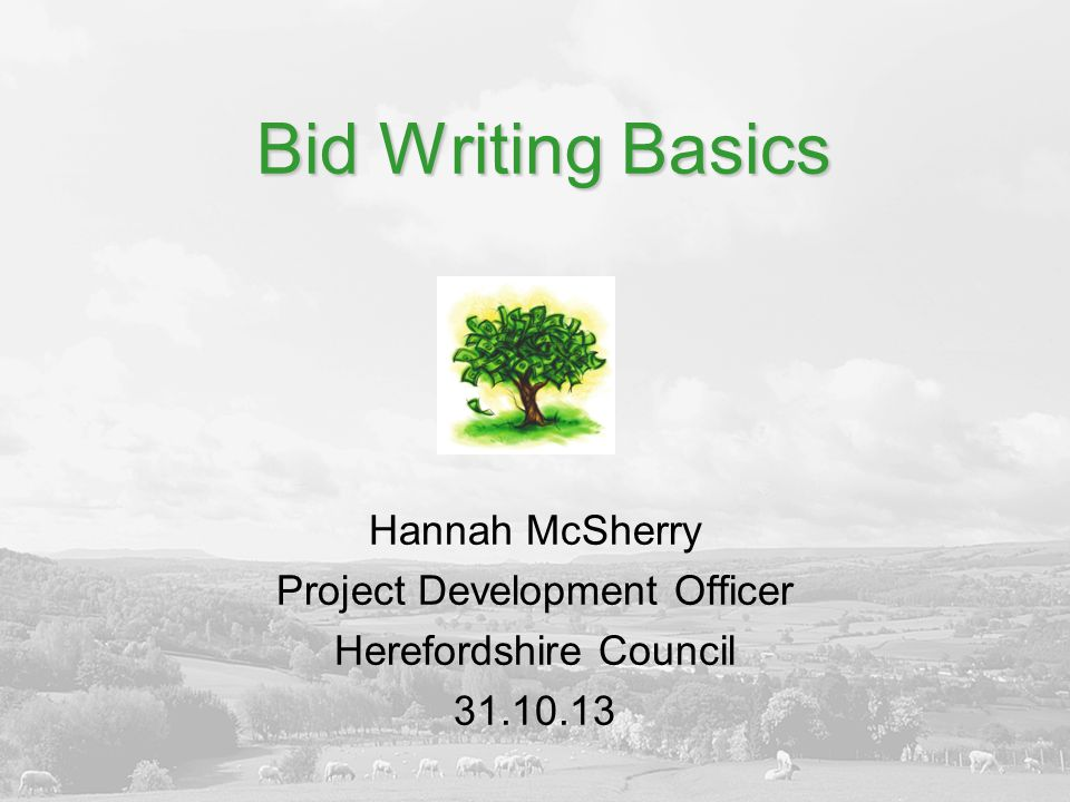 Bid Writing Basics Hannah McSherry Project Development Officer Herefordshire Council 31.10.13