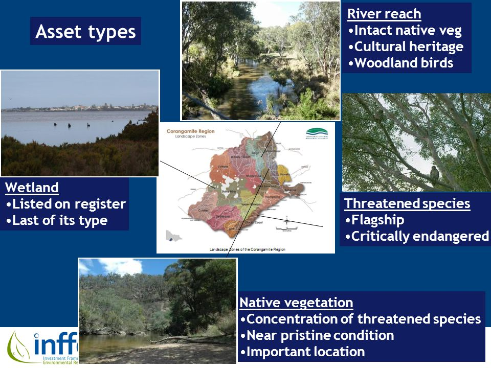 River reach Intact native veg Cultural heritage Woodland birds Wetland Listed on register Last of its type Threatened species Flagship Critically endangered Native vegetation Concentration of threatened species Near pristine condition Important location Asset types