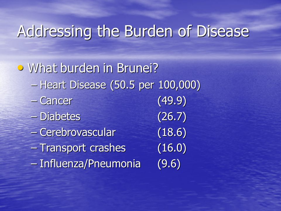 Addressing the Burden of Disease What burden in Brunei.