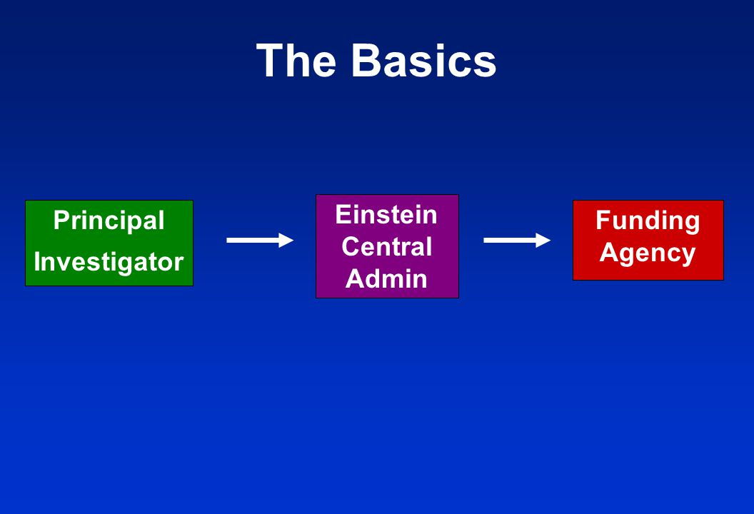 Principal Investigator Funding Agency Einstein Central Admin The Basics