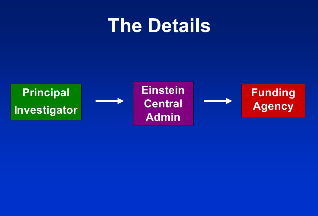 Principal Investigator Funding Agency Einstein Central Admin The Details