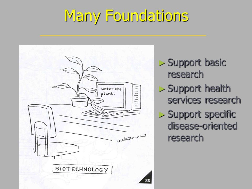 Many Foundations ► Support basic research ► Support health services research ► Support specific disease-oriented research