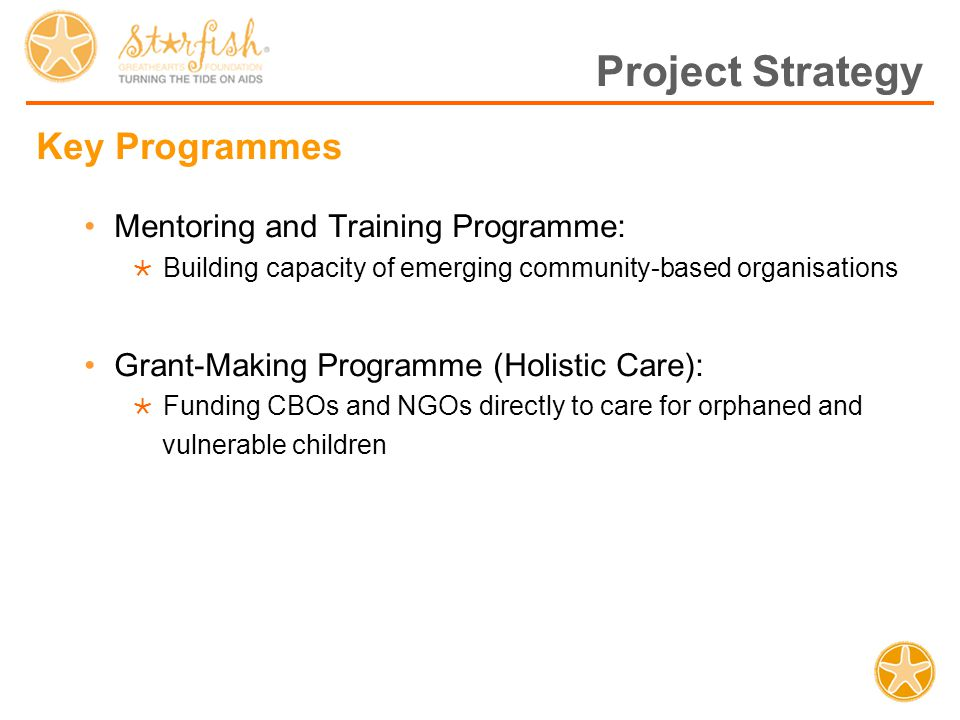 Project Strategy Key Programmes Mentoring and Training Programme:  Building capacity of emerging community-based organisations Grant-Making Programme