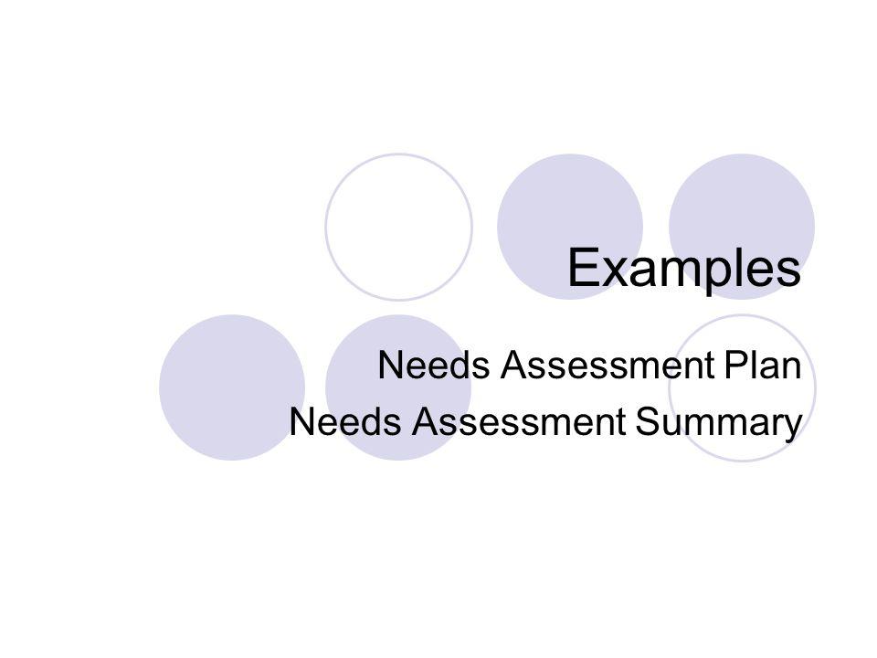 Examples Needs Assessment Plan Needs Assessment Summary
