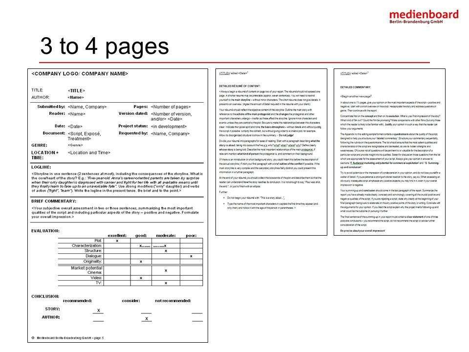3 to 4 pages