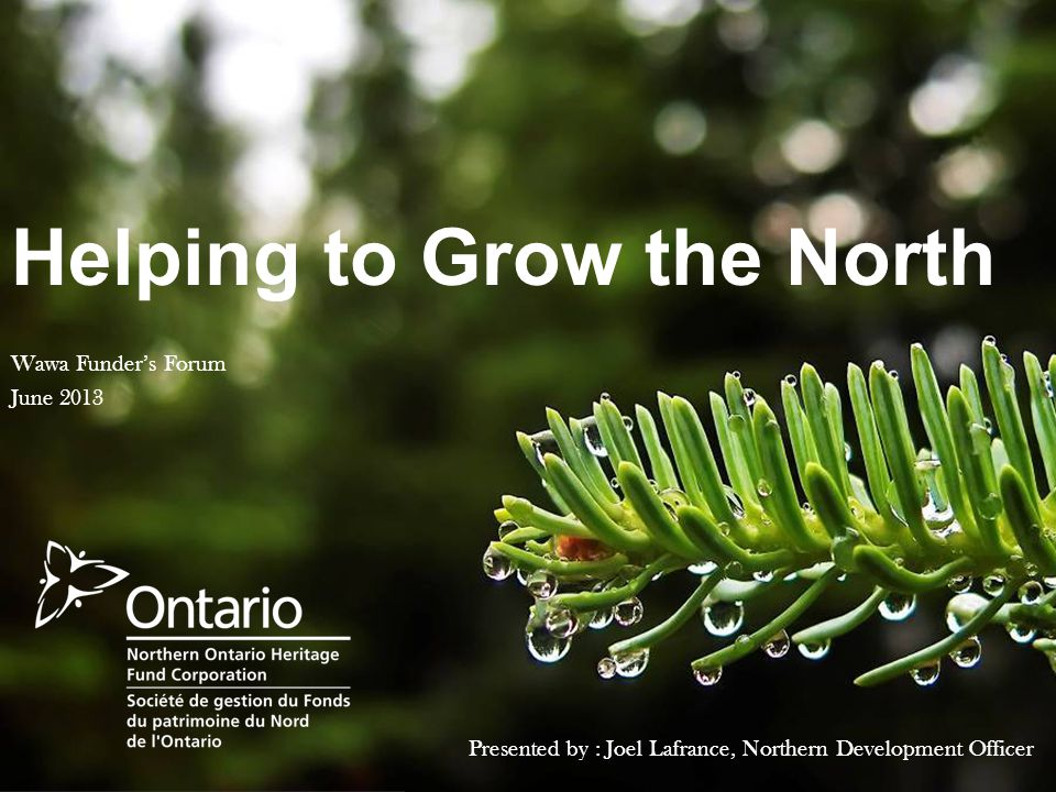 Helping to Grow the North Presented by : Joel Lafrance, Northern Development Officer Wawa Funder's Forum June 2013