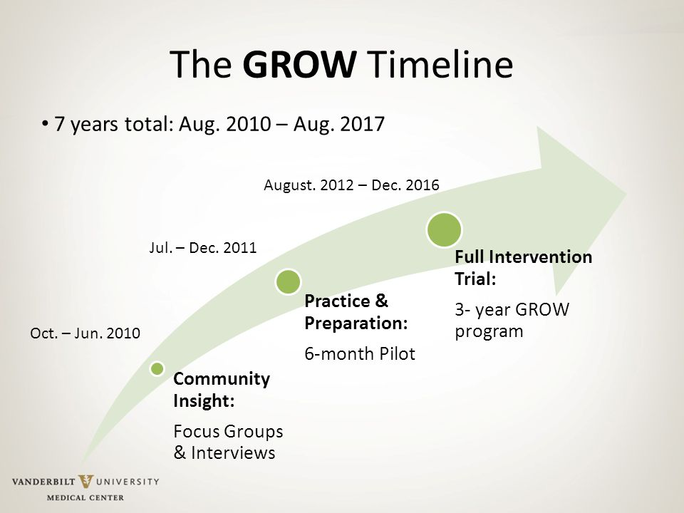 The GROW Timeline Community Insight: Focus Groups & Interviews Practice & Preparation: 6-month Pilot Full Intervention Trial: 3- year GROW program Oct.