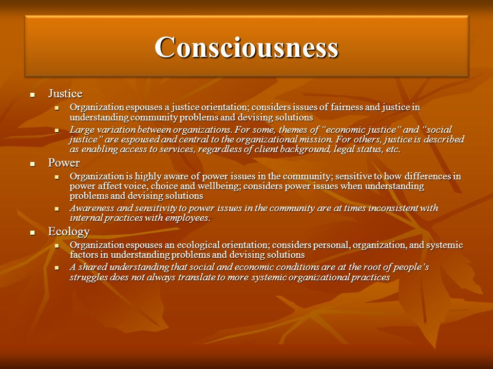 ConsciousnessConsciousness Justice Justice Organization espouses a justice orientation; considers issues of fairness and justice in understanding comm